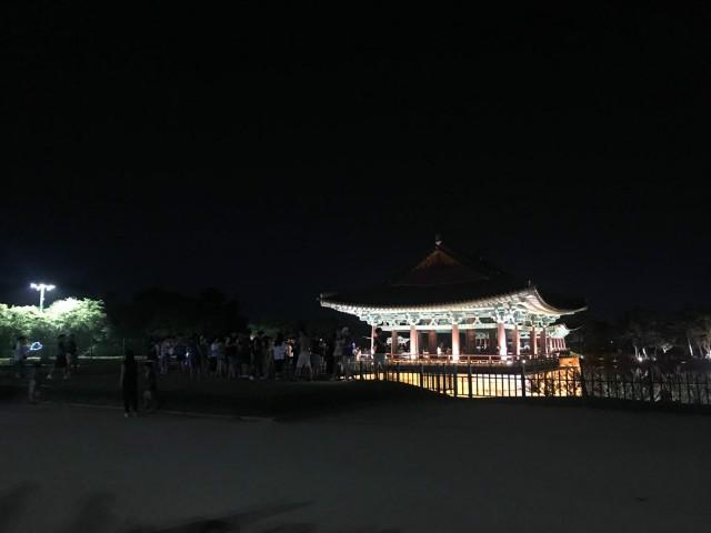 야간투어4.jpg